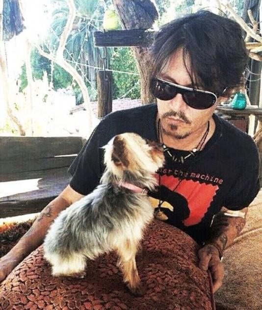 Джонни Депп со своей собакой. Фото: www.starslife.ru