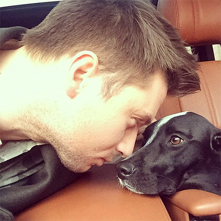 Сергей Лазарев кормит любимую собаку особенными тортами Фото: Инстаграм