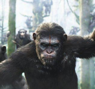 Разбор концовки фильма «Планета обезьян: Война»