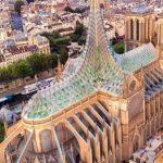 На крыше Собора Парижской богоматери будут выращивать манго!