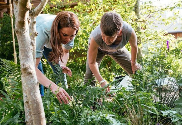 Лесная нимфа Кейт Мидлтон предлагает - дышите в лесу и станете прекрасными