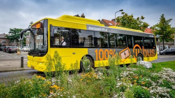 Новая выдумка голландцев для сохранения исчезающих пчел гнездится на автобусных стоянках