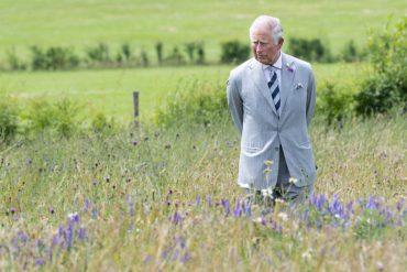 """Принц Чарльз бьет в набат: """"У нас не осталось времени, чтоб спасти планету"""""""