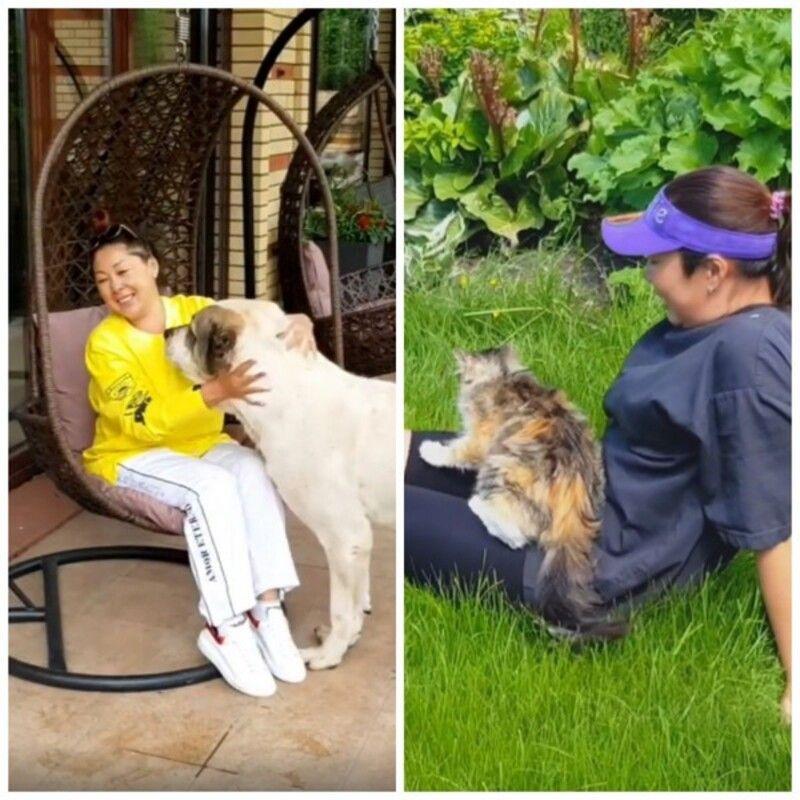 Аниту Цой затравили в Сети из-за видео с котом 😳🤔🐱