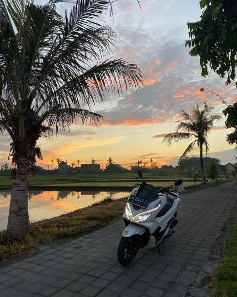 Настя Тропицель разбилась на Бали: фото с места происшествия и новые подробности