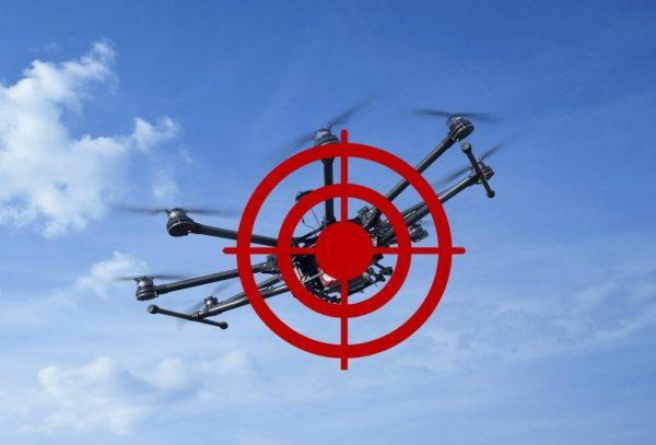 Не летайте над домом Рудковской - у нее есть собственное ПВО