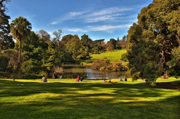 Мельбурн, ботанический сад,