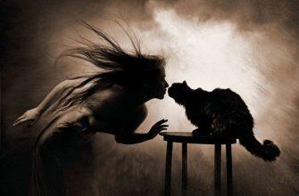 Женщиина и кошка