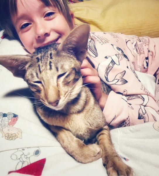 Дочь Дарьи Мороз с котом Сиропом