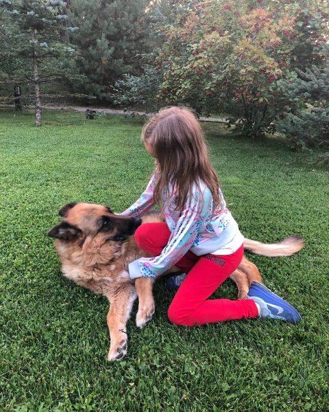 Дочь Оксаны Федоровой с овчаркой из приюта