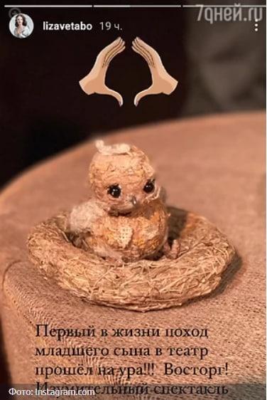 Публикация Лизы Боярской