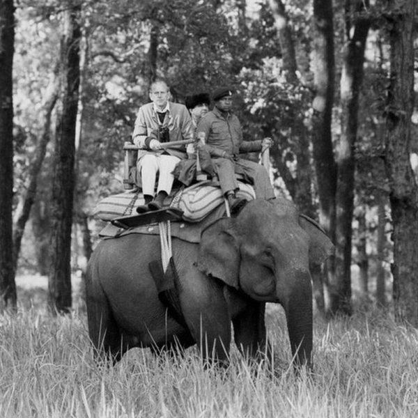 Принц очень любил природу и заботился об охране окружающей среды