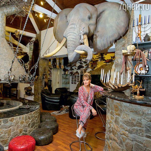 Трофейная голова слона в доме Прокловой и Тришина. Фото Проклова и Тришин с убитым сернобыком. Фото 7days.ru