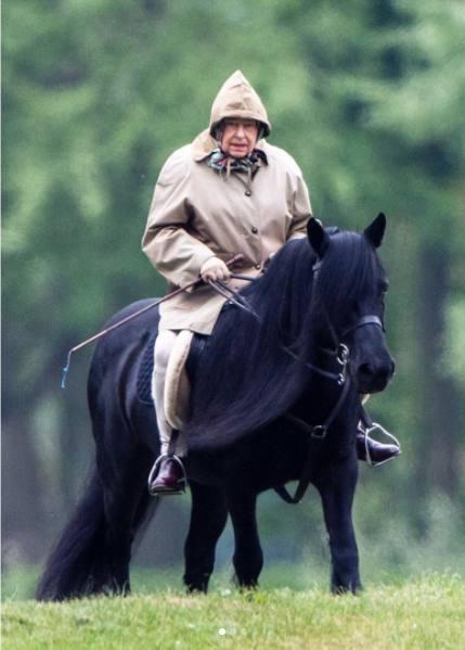 Елизавета II верхом на лошади