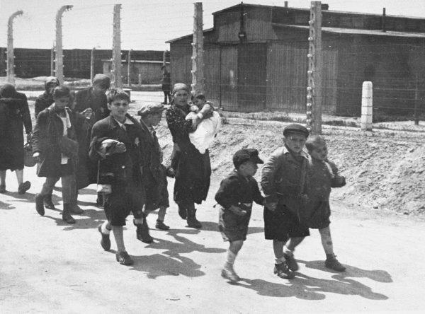Дети евреи