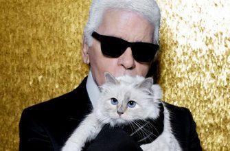 Карл Лагерфельд с кошкой
