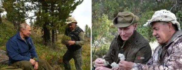 Путин и Шойгу в тайге. Фото Фото Пресс-служба Президента РФ